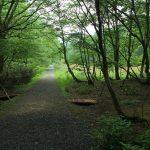 条例で日本人を差別する岡山県!外国人留学生は後楽園など県立公園が無料!岡山市も追随か?